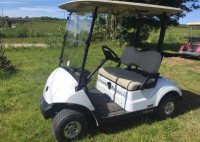 2019 Yamaha Glacier Electronic Fuel Injected Golf Car