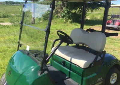 2019 Yamaha Drive2 Emerald Green Electronic Fuel Injected Golf Car