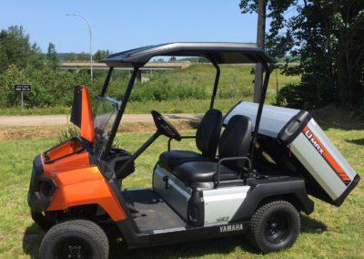 2019 Yamaha Umax One Utility Car