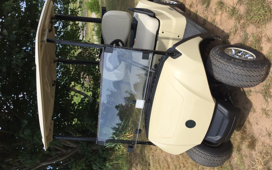 2021 Yamaha Drive2 Electronic Fuel Injected Golf Car